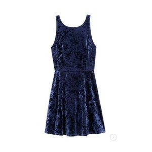 Blue Velvet Fit & Flare Dress